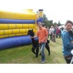 24.08.2014 Hoffest