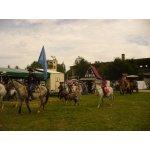01.08.2015 Western Days Panitzsch