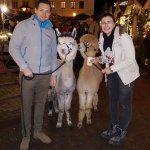 15.12.2019 Weihnachtsmarkt Grimma